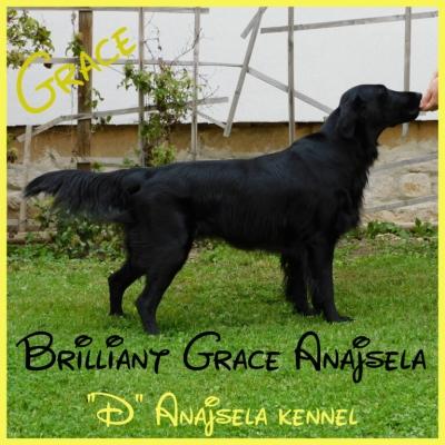 Brilliant Grace Anajsela - matka vrhu D