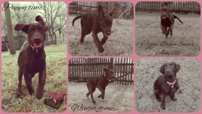 Agnes 5měsíců