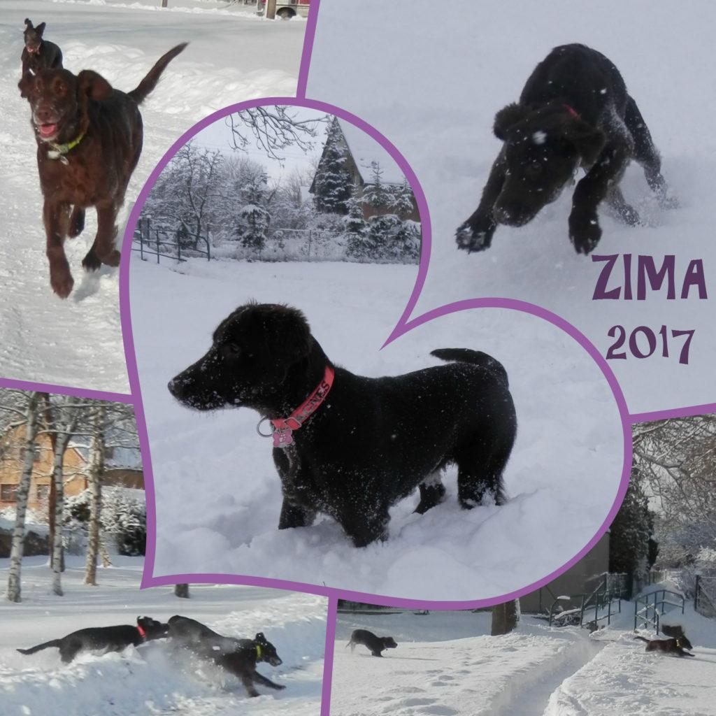 zima-20172