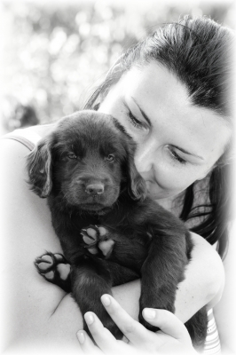 Agnes - puppy